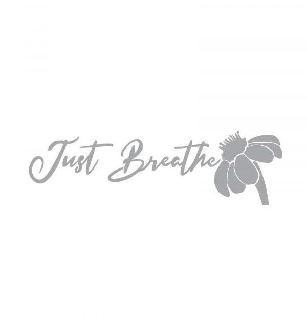 5031 Just Breathe
